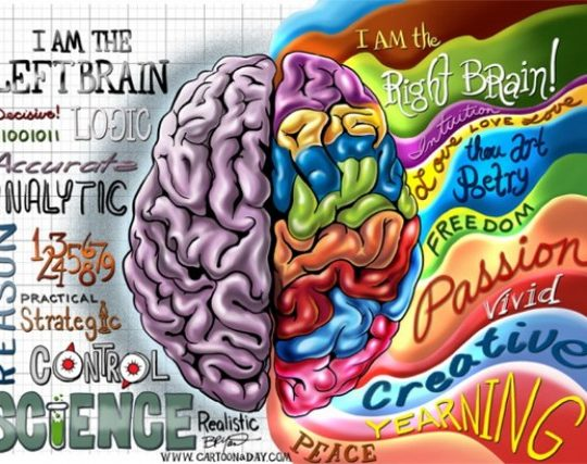 Creativity and Right Brain Function for Happiness